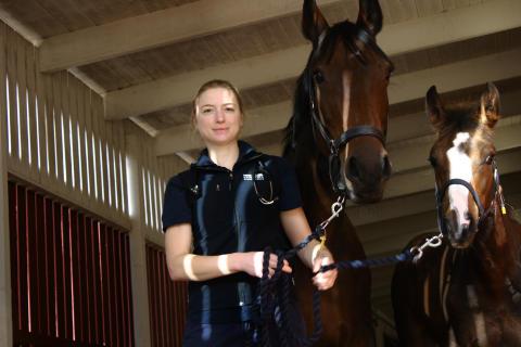 Linda Wright, veterinär vid Evidensia Specialisthästsjukhuset Helsingborg
