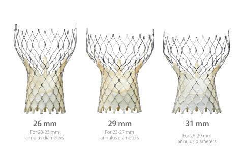 Positiva nyheter för patienter med förträngning på aortaklaffen*