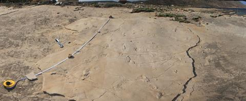 The footprints from Trachilos