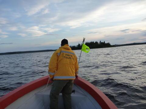 Hårdare tag mot tjuvfiske längs kusten