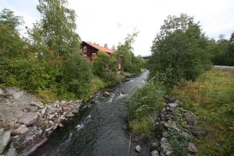 Miljonprojekt för fiskvandring i Billstaån
