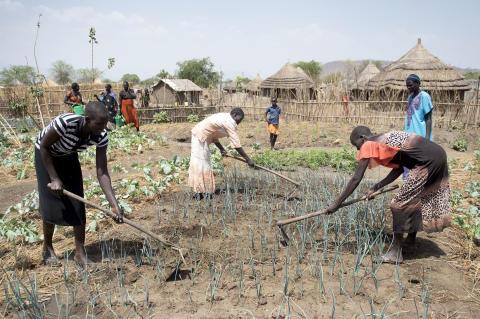Nyt partnerskab skal booste entreprenørskab blandt flygtninge og lokale i Uganda