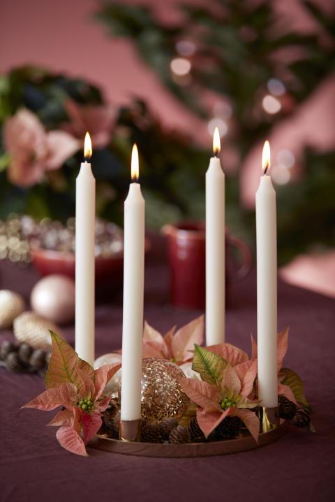 Adventsstämning med julstjärnor