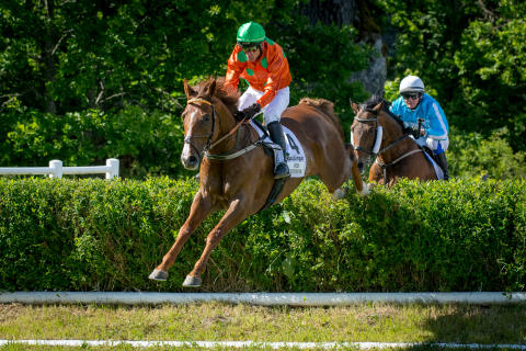 Svenskt Grand National 17 juni