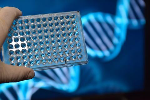 Significant Growth Expected in NGS Sample Preparation Market with Competitive Study and Analysis by 2027 | Key Players: Nugen Technologies, Oxford Gene Technology, Oxford Nanopore Technologies, Perkinelmer