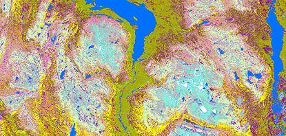 Bättre satellitbaserade vegetationskartor i sikte