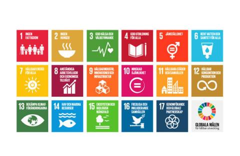 Effektivare energianvändning en förutsättning för alla Agenda 2030-mål