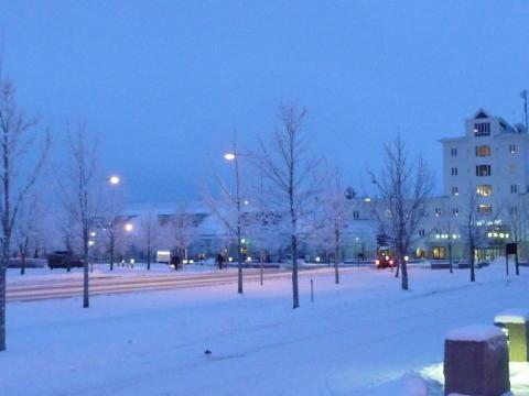 Vinter i Mjärdevi