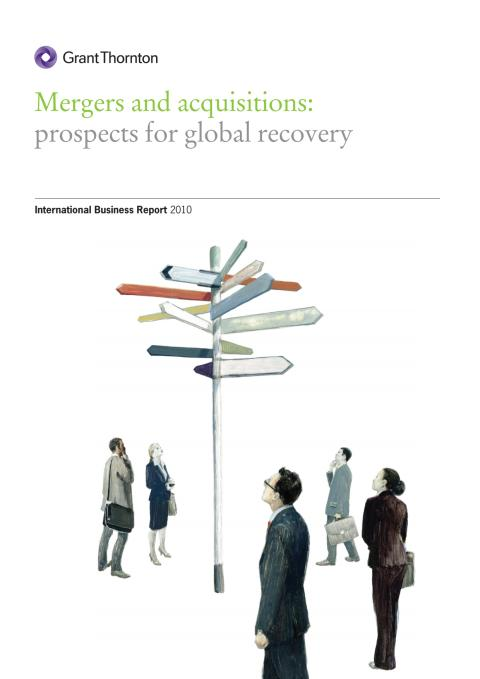 M&A rapport 2010