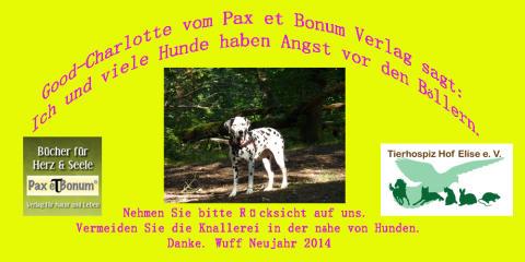 Good-Charlotte Chefin vom Pax et Bonum Verlag sagt: Ich und viele Hunde haben Angst vor den Böllern.