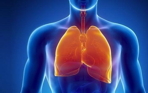 Idiopathic Pulmonary Fibrosis Treatment Market To Boom In Near Future By 2027 Scrutinized In New Research Bristol-Myers Squibb Company, Cipla, F. Hoffmann-La Roche Ltd, MediciNova