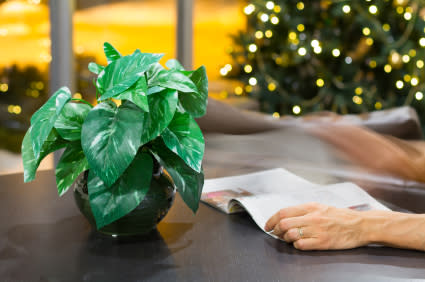 Lehti on joulun suosikkilahja – Katso lahjalehtien Top 10