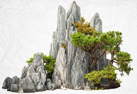 Tuschmåleri inom bonsai och hur man skapar man en idealbild av naturen