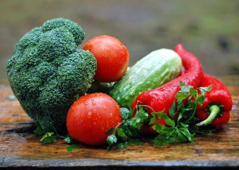 Campus Alnarp – en utvecklingsarena för framtidens mat och odling?