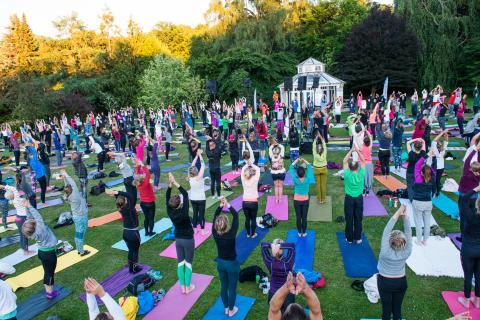 Deltagarrekord då 900 yogaentusiaster samlades i Botaniska trädgården