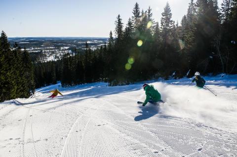 Danskerne generobrer Vinter-Sverige