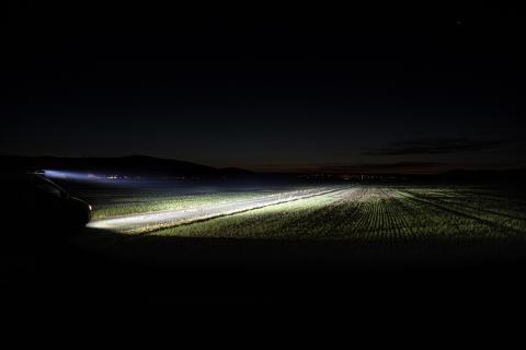 Siberia ljusbild – Strands Lighting Division