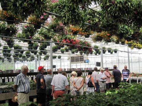 Floraliën Gent afbeelding 2