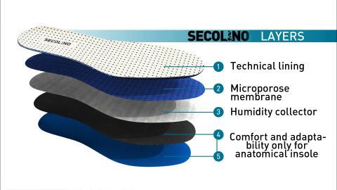 Secolino sula mot fotsvett, uppbyggnad.