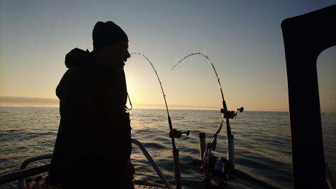 Sportfiske i Hanöbukten