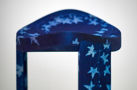 Blueming – Molly Malmer
