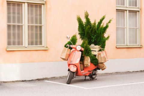 Plantagens utökar e-handeln ytterligare