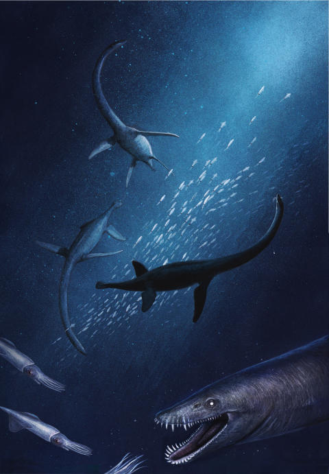 Life reconstruction of Lagenanectes richterae