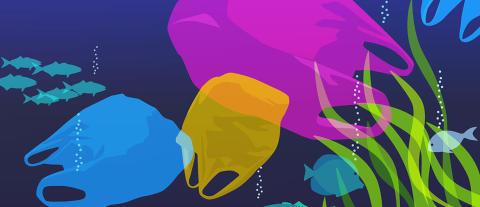 Blogikirjoitus Brotherilta: Muovin tulevaisuus - 10 niksiä muovijätteen vähentämiseen