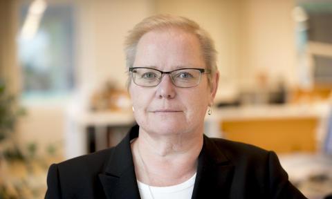 vd, Eva Halldén