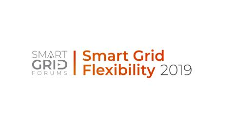 Smart Grid Flexibility 2019: Wrap Up