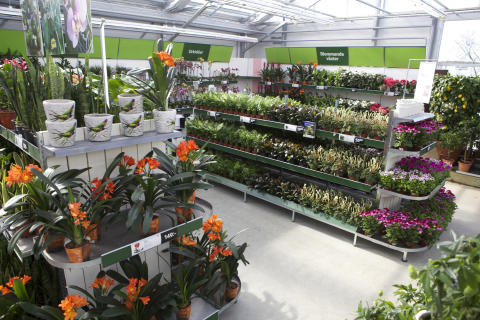 Blomsterlandet öppnar sin 50:e butik