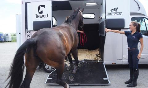 Checklista vid transport av häst