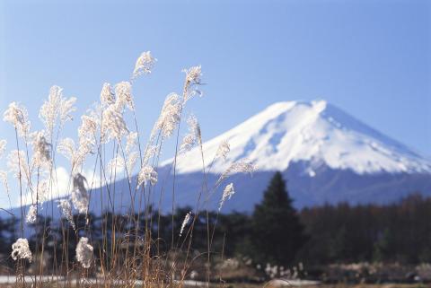 Rundresa i Japan slutsåld: Extra avresa till Japan med Temaresor