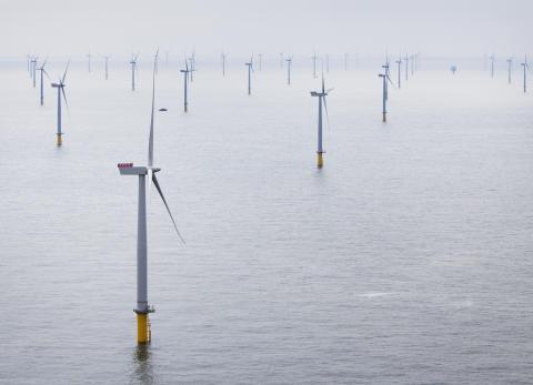 Siemens och David Cameron inviger världens största vindkraftspark