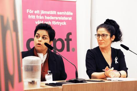 GAPF uppmärksammar Internationella Flickdagen i riksdagen