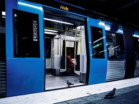 En duva tar tunnelbanan i stället för att flyga. Foto: Johan Lind/N.