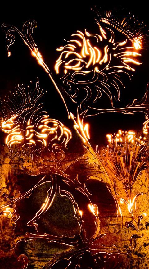 Fire garden at Bury Light Night 2012