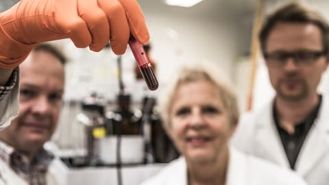 Biomarkörer i blodet visar matens stora betydelse för åldersdiabetes