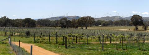 Ararat Wind Farm signs $200 million debt package