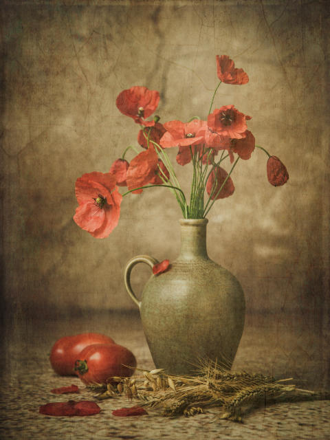 Iwona Czubek, Poppy and tomatoes