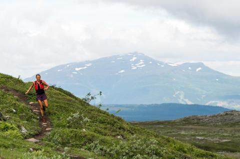 Succé för Kia Fjällmaraton i Årefjällen