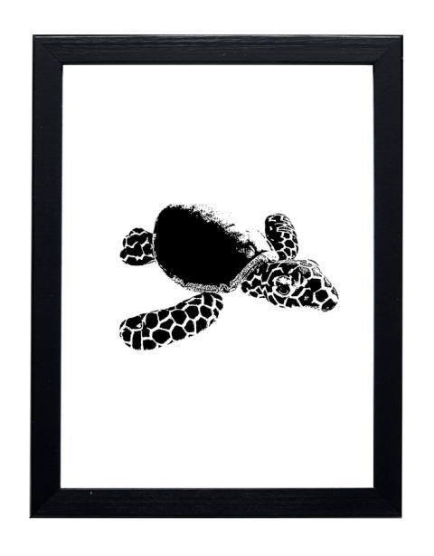 sköldpadda-med-ram
