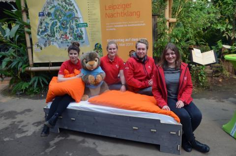Vier Volunteers sind mit Bett und Murmeltier Mandy ins Gondwanaland im Zoo Leipzig gereist