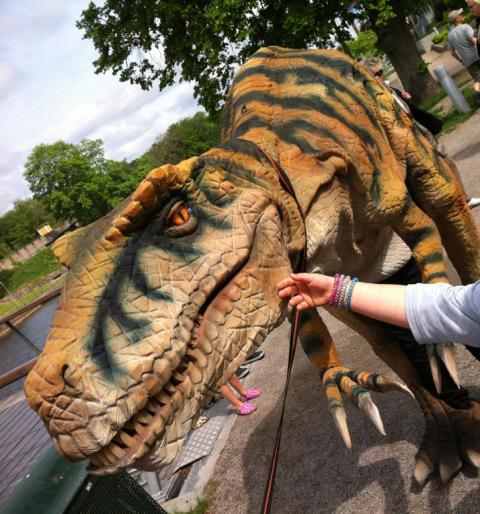 Sommarens häftigaste sommarjobb – Dinosaurie