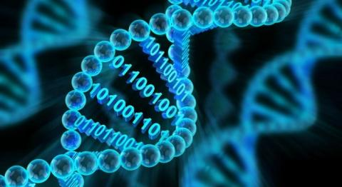 CRISPR Technology Market Competitive Landscape and Massive Growth Prospects in the Globally Forefront by 2027 with Top Key Players Thermo Fisher Scientific, Merck KGaA, Horizon Discovery Group, Cellecta