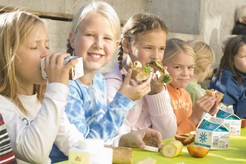 Norske barn får inn miljøvaner med skolemelken