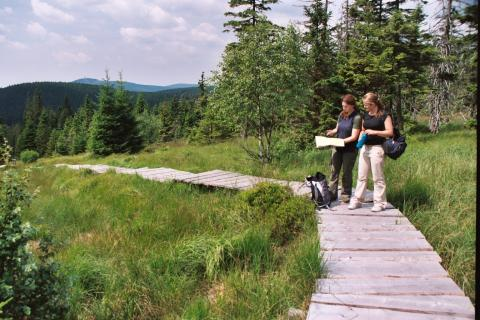 Enjoying nature pure and simple in the Harz National Park