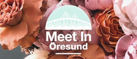 Meet In Öresund