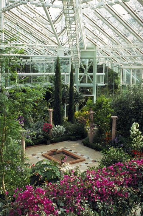 Medelhavsinspiration och festligheter i Edvard Andersons växthus