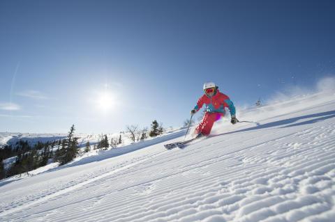 Tandådalen Sälen 2013 - Downhill skiløb